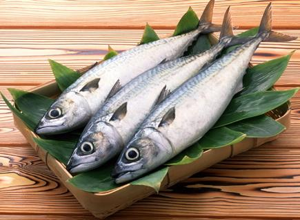 オメガ3 魚